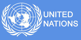 United Nations - ( NGO Service Industry )