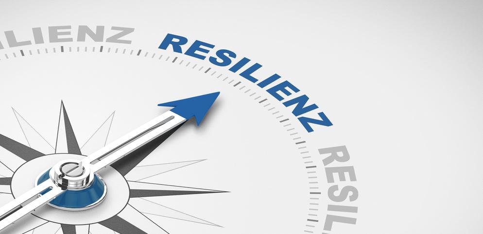 Resilienz-wie manage ich meine persönlichen Energieressourcen