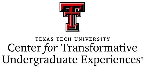 Center for Transformative Undergraduate Experiences