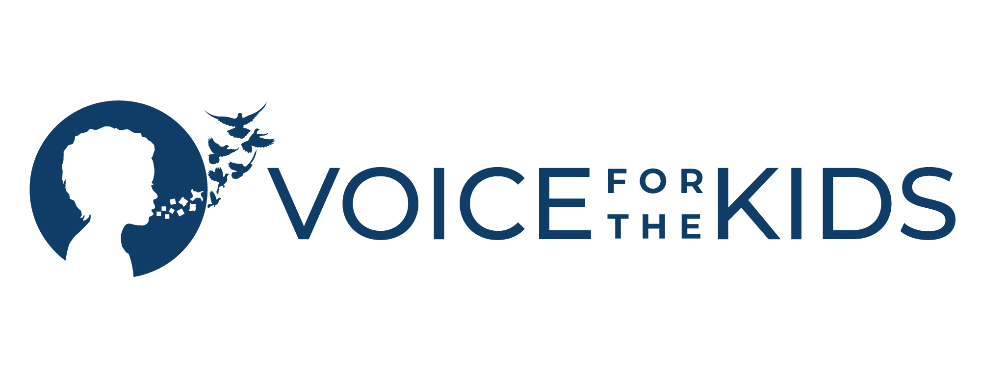 Voice for the Kids