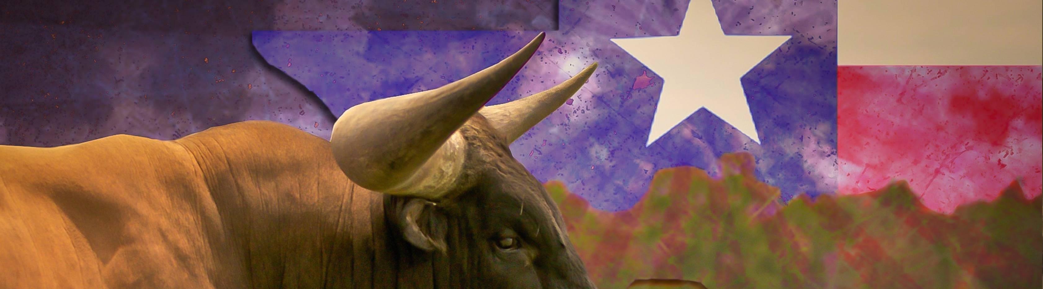 Health Literacy Texas Inaugural Virtual Conference